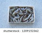fresh white shrimps group in... | Shutterstock . vector #1209152362