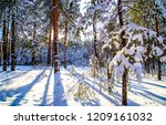 Winter Snow Forest Sunset Scen...