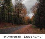remote road in the adirondack... | Shutterstock . vector #1209171742