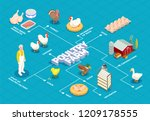 poultry farm flowchart with... | Shutterstock .eps vector #1209178555