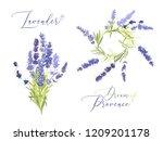 lavender illustration wreath... | Shutterstock .eps vector #1209201178