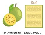 bael exotic juicy fruit whole... | Shutterstock .eps vector #1209259072