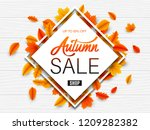 autumn sale background | Shutterstock . vector #1209282382