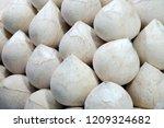 fruit scene   fresh young...   Shutterstock . vector #1209324682
