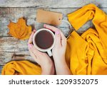 a cup of tea and a cozy autumn... | Shutterstock . vector #1209352075