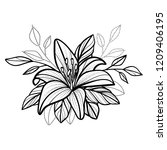 hand drawn exotic tropical lily ... | Shutterstock .eps vector #1209406195