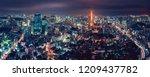 panorama tokyo city skyline... | Shutterstock . vector #1209437782