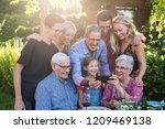 summertime  a family of three... | Shutterstock . vector #1209469138