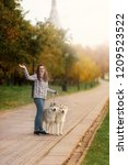 Stock photo girl plays with her husky dog in fallen autumn leaves 1209523522