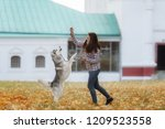 Stock photo girl plays with her husky dog in fallen autumn leaves 1209523558