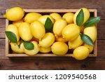 fresh lemons with leaves in a... | Shutterstock . vector #1209540568