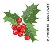 holly berry  christmas holly... | Shutterstock .eps vector #1209624265