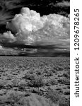 sonora desert in infrared... | Shutterstock . vector #1209678265
