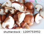 close up top view of mushroom... | Shutterstock . vector #1209753952