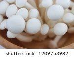 close up top view of mushroom... | Shutterstock . vector #1209753982