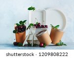 catering disposables  cups ... | Shutterstock . vector #1209808222
