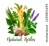 natural herbs and organic... | Shutterstock .eps vector #1209851695