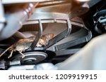 auto mechanic clean dirty air... | Shutterstock . vector #1209919915