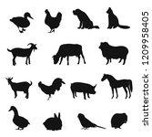 set of  black silhouette... | Shutterstock .eps vector #1209958405