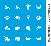 wildlife icon. collection of 16 ... | Shutterstock .eps vector #1209985825