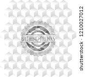bathing trunks retro style grey ...   Shutterstock .eps vector #1210027012