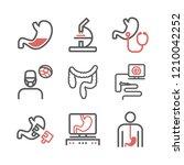 gastroenterology line icons.... | Shutterstock .eps vector #1210042252