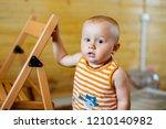 a portrait of a cute adorable... | Shutterstock . vector #1210140982