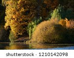 amazing nature and fall concept ... | Shutterstock . vector #1210142098