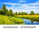 summer green rural river...   Shutterstock . vector #1210181635