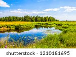 Summer Nature River Landscape....