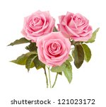 Stock photo pink roses bunch isolated on white background 121023172