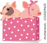 two funny pigs in a box. year... | Shutterstock .eps vector #1210329625