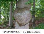 human heart   shaped strain.... | Shutterstock . vector #1210386538