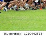 cross country runners running...   Shutterstock . vector #1210442515