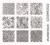 floral ornaments  botanical... | Shutterstock .eps vector #1210492522