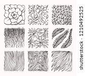 plant  floral textures ... | Shutterstock .eps vector #1210492525