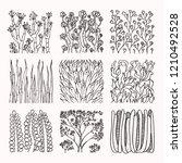 floral textures  subtropical... | Shutterstock .eps vector #1210492528