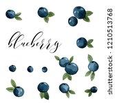 a set of different blueberry... | Shutterstock . vector #1210513768