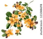 watercolor flowers in a...   Shutterstock . vector #121088698