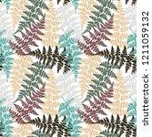fern frond herbs  tropical... | Shutterstock .eps vector #1211059132