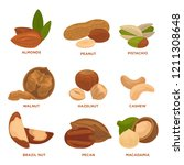 ripe nuts and seeds ... | Shutterstock . vector #1211308648
