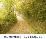autumn walk up empty british... | Shutterstock . vector #1211536792