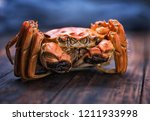 there is a hairy crab on the... | Shutterstock . vector #1211933998