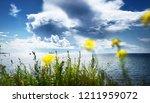 seascape from a helsinki shore...   Shutterstock . vector #1211959072