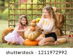 two young girls sitting on... | Shutterstock . vector #1211972992