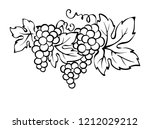grapes   vector illustration ... | Shutterstock .eps vector #1212029212