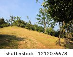 mountain meadow with dry grass... | Shutterstock . vector #1212076678