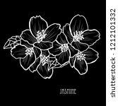 decorative jasmine  flowers ... | Shutterstock . vector #1212101332