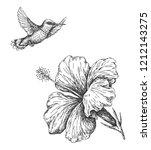 hand drawn  monochrome humming...   Shutterstock .eps vector #1212143275