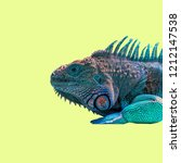 colorful lizard on color... | Shutterstock . vector #1212147538